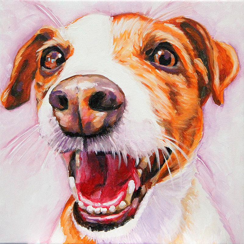 ritratti-di-cani-jack-russel-terrier
