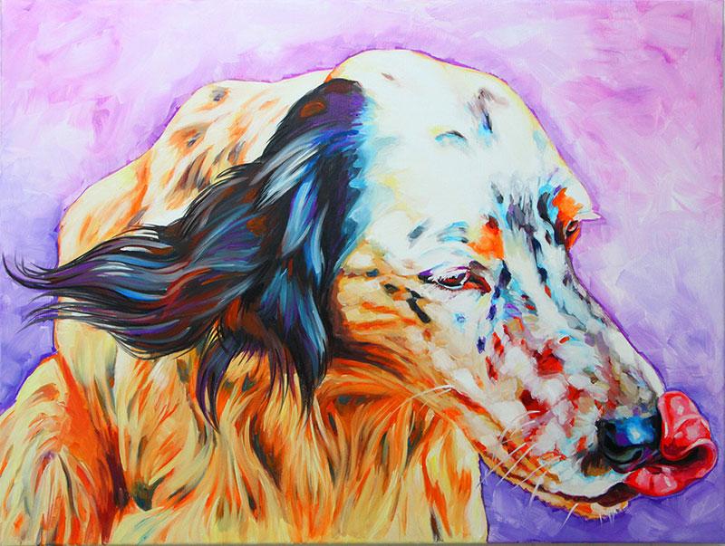 ritratto-di-setter-cane